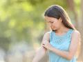 Lutter contre les moustiques, ce que vous devez savoir